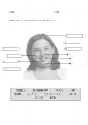 English Worksheets: parts of the head