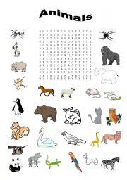 English Worksheets: Word search - animals
