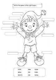 English Worksheets: Noddy�s Body