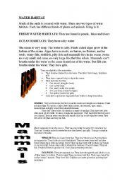 English Worksheet: WATER HABITAT