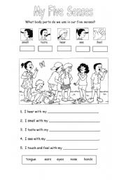 English Worksheet: My five senses