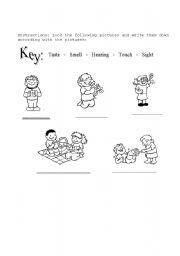 English Worksheets: the sense
