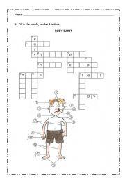 English Worksheets: bod