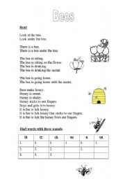 English Worksheets: Bees (2 pages)