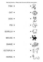 English Worksheets: Matching Exercise - Animals