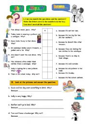 English Worksheets: WHY   WHY NOT  -  BECAUSE