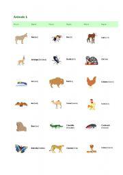 English Worksheets: animals 1
