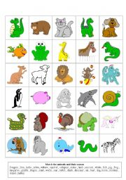 graphic regarding Zoo Animal Flash Cards Free Printable known as aniaml flash playing cards 2 - ESL worksheet via storyteller