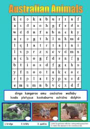 English Worksheets: AUSTRALIAN ANIMALS (PART 1)
