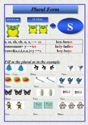 English Worksheets: Plural Form