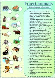 English Worksheets: Forest animals matching exercise