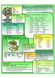 English Worksheet: The natural world - Plants and Trees