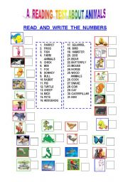 English Worksheets: A READING TEST ABOUT SOME ANIMALS