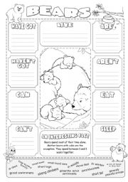 English Worksheets: Describing Bears