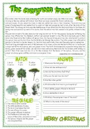 English Worksheets: THE EVERGREEN TREES