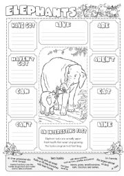 English Worksheet: Describing Elephants