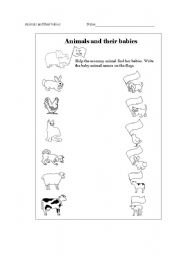 English Worksheet: Animals and their babies