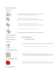 English Worksheets: bug