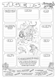 English Worksheets: Describing Tigers