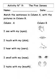 math worksheet : english teaching worksheets the five senses : Five Senses Worksheets Kindergarten