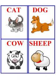 English Worksheets: Animals 4