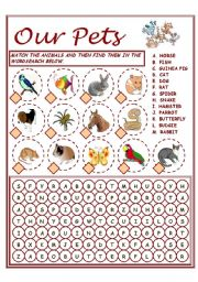English Worksheet: OUR PETS - VOCABULARY