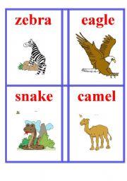 English Worksheets: Animals 5.