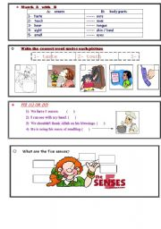 English Worksheets: worksheet about the senses