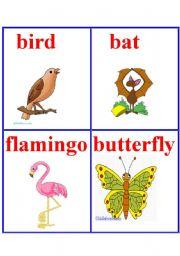 English Worksheets: Animals 8.
