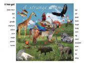 English Worksheets: Strange Animal