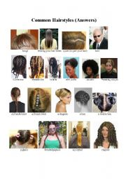 Vocabulary worksheets > Face and body > Hairstyles vocabulary
