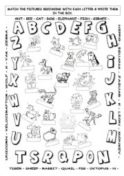English Worksheets: ABC hunt