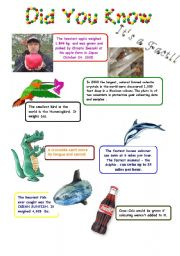 English Worksheets: Did you know