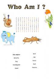English worksheet: word search