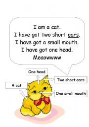 English Worksheets: a cat/ body parts