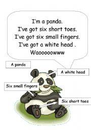 English Worksheets: panda body