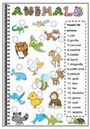 English Worksheet: ANIMALS ( SET 2)