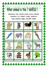 English Worksheets: What animal is this ? GUESS !