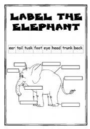 English Worksheets: The elephant - part 2/2 - 2 WS + key