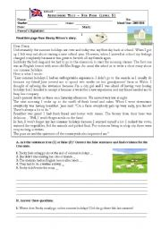 English Worksheets: Holidays Diary test