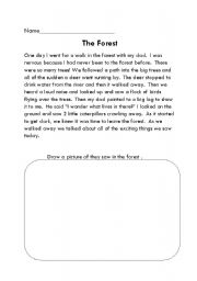 English Worksheets: The Forest
