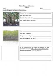english teaching worksheets plants. Black Bedroom Furniture Sets. Home Design Ideas