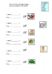 English Worksheets: THIS - THAT / ANIMALS