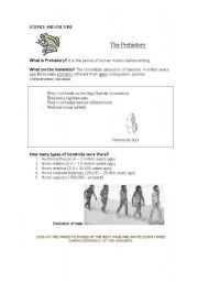 English Worksheet: The Prehistory ( 1/2 )