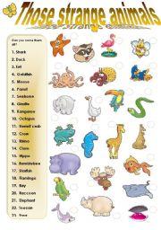 English Worksheets: THOSE STRANGE ANIMALS