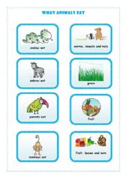 English Worksheets: WHAT ANIMALS EAT  3/4
