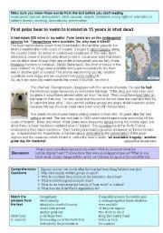 English Worksheets: Polar Bear shot dead after swimming 200 miles!