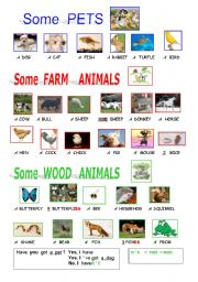 English Worksheets: ANIMALS  PICTIONARY