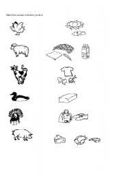English Worksheets: animals-product