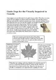 English Worksheets: Guide dogs.
